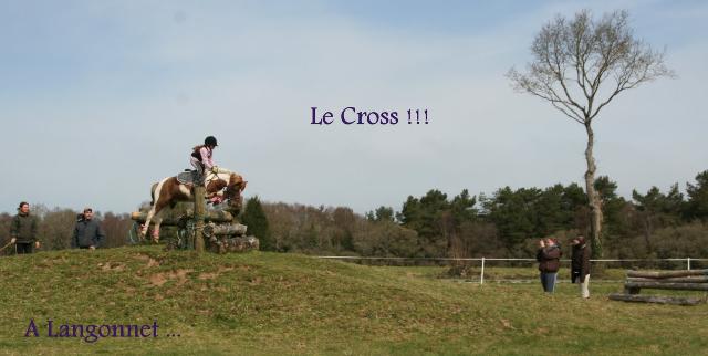 20-quizz-cross