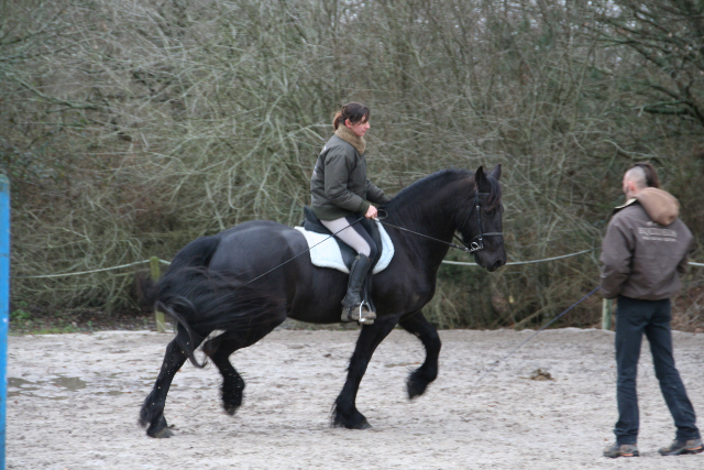 stage-dressage-toma4
